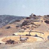 Alonissos, agricultural activities of the '70s
